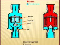 INTRODUCTION TO STEAM TRAPS AND DRIP LEG: A Brief Presentation
